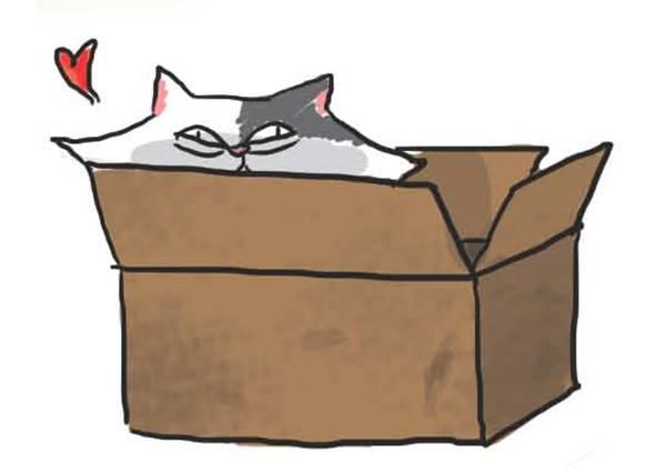 就算買再貴的高級墊子給貓咪,也比不上剛打開的紙箱,原因揪竟是…?