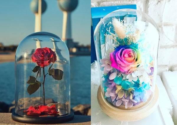 房間擺一朵,你的王子就快現身啦!國外超夯「浪漫永生玫瑰瓶中花」,彩虹版的簡直美出花束新高度了!
