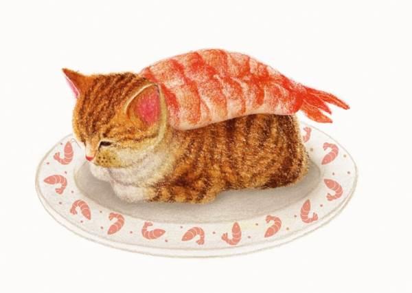 喂~這不是毯子別鑽啦!「超萌貓咪鑽入生魚片假扮握壽司」可愛瞬間,玉子燒這一貫你表情也太酥胡療癒了吧