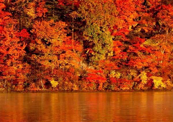 日本人最驕傲的世界級絶景!擁有360度不同角度的紅葉景色,怎麼看都像人間天堂啊