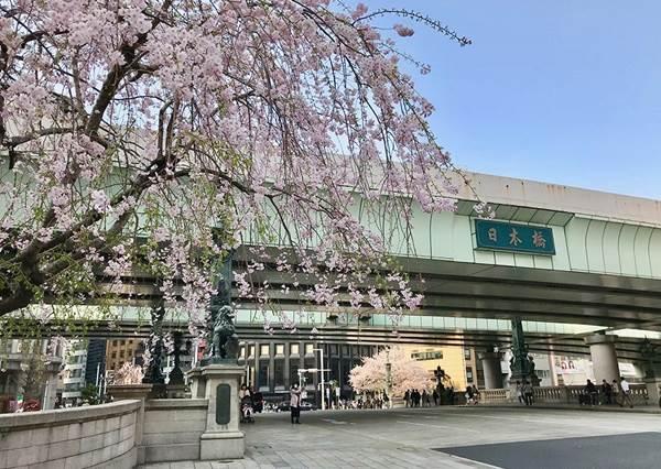 超萌皮卡丘怎麼捨得吃!東京日本橋的「達人美食」3選,完全甘願在百年糖果老舖浪費一整天啊~