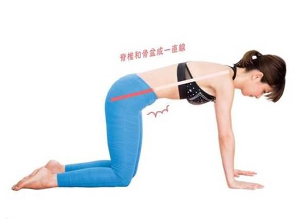 S曲線&馬甲線一次Get!3動作鍛鍊「骨盆底肌」養成易瘦體質,調整姿勢讓身材小缺點自然不見!