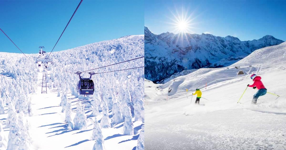 整片「樹冰」美到哭!內行人超推《日、韓、歐滑雪行程》公開,還不快趁冬天結束之前滑一波~