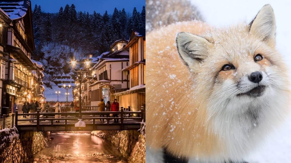 《神隱少女》電影場景是真實存在的!復古街道裡藏溫泉旅館,還加碼破百隻狐狸村給你!