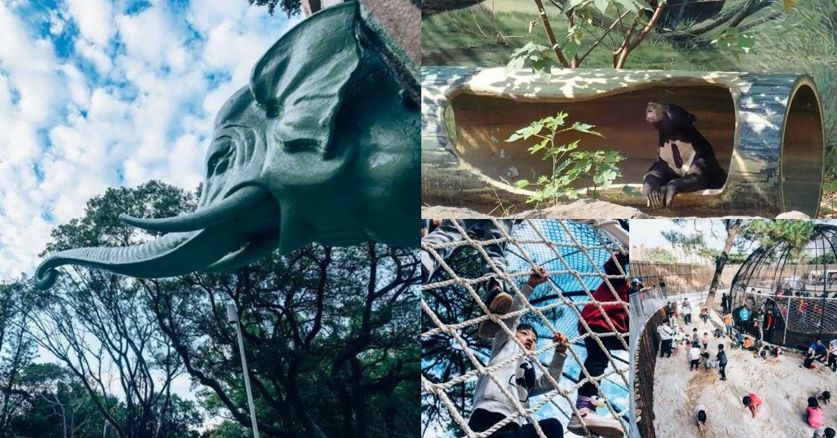 新竹新景點「超暖心」!《新竹動物園》打造沒有籠子的動物園,6大必逛亮點總整理