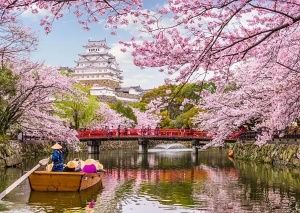 日本武漢肺炎影響一覽!三麗鷗樂園、吉卜力美術館都休園了