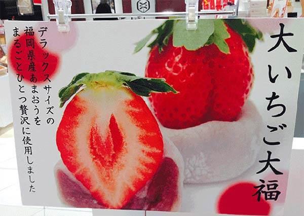 這真的不是樣品嗎?季節限定草莓大福鮮美爽口且甜而不膩,竟然意外不貴?