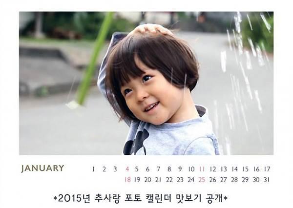 養眼一整年 2016明星年曆大賞