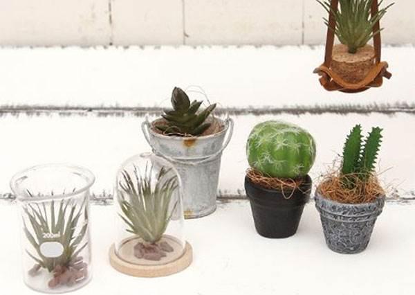 超迷你實物縮小系扭蛋!日本限定「小盆栽」,扭幾顆就可以打造桌上型植物園!