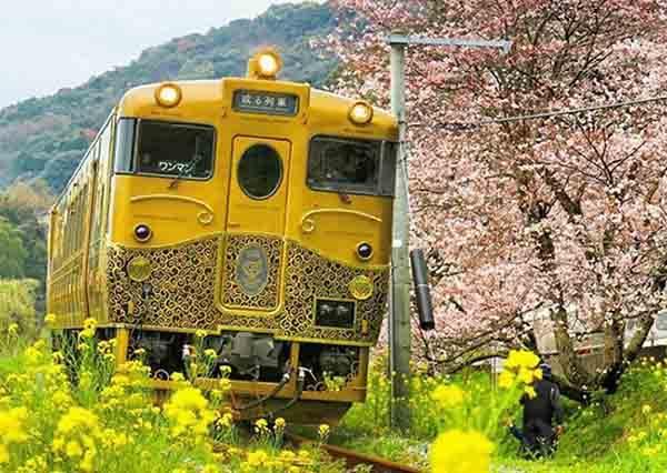 私房推薦!去日本一定要搭到這5台列車,看美景邊吃道地美食你一定沒試過!