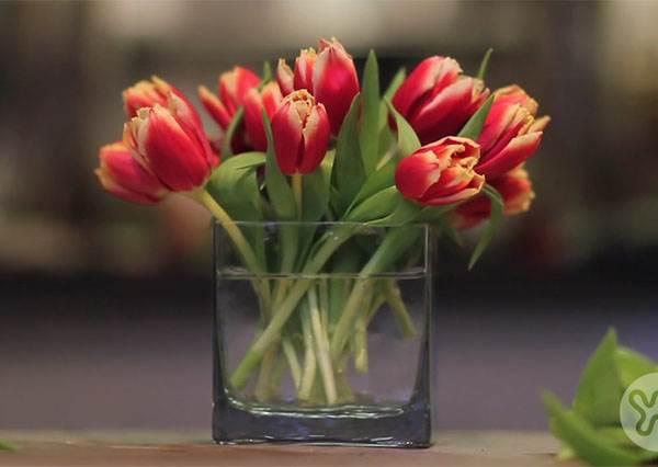 收到花卻不知道怎麼擺才好看? 達人終於願意透露:「膠帶」就能解決你的煩惱!