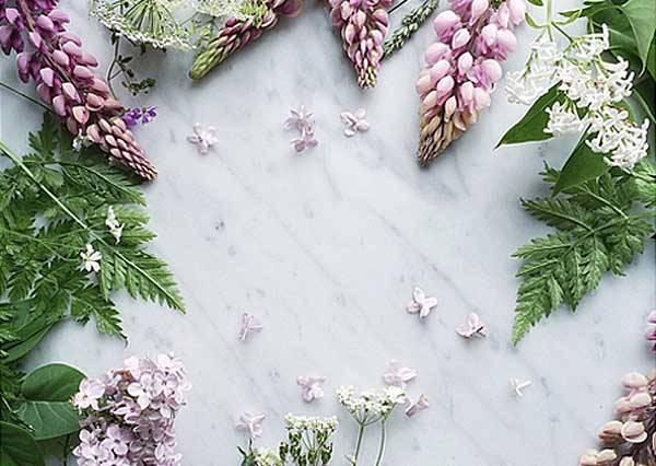 「不許你胡說!」送花一點都不會無趣!乾燥花、花瓣冰…百變小花讓你明白它的好