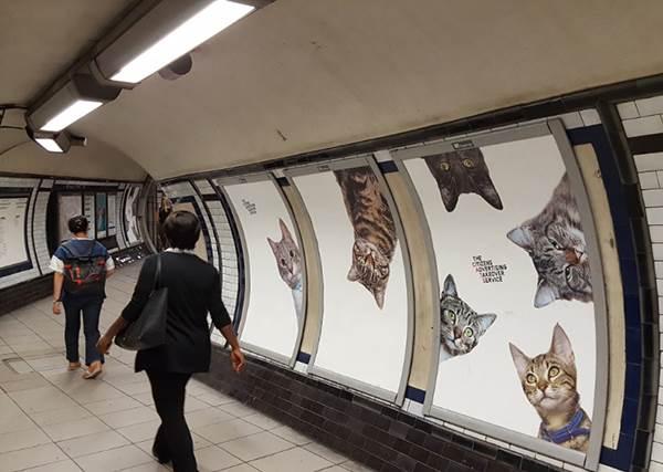 喵星人攻佔地鐵!從票閘口開始就萌到讓貓奴無法招架,連這小角落都不放過!