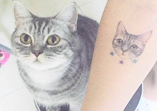 就是想要你永遠在我身邊❤文青系「寵物微刺青」,快幫自己的萌寵選一張照片去刺吧!