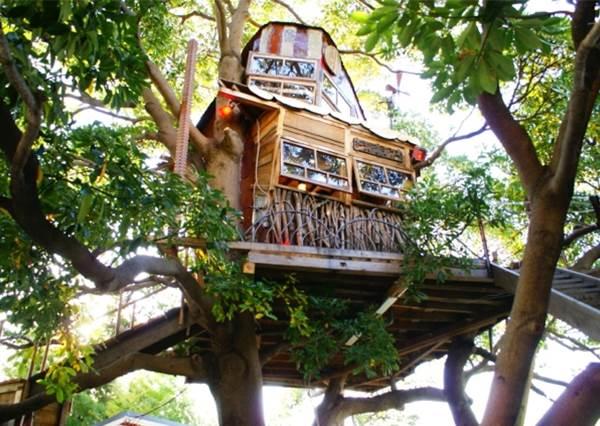 都會裡的秘密基地,東京近郊的超人氣『樹屋咖啡廳』~