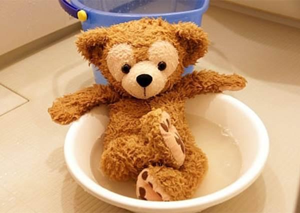 更珍惜布偶娃娃♡教妳幾招簡單清洗保養方法!