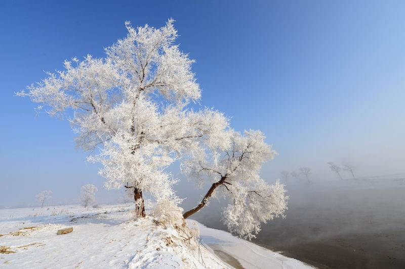 環遊世界五大夢幻雪景!冬季打卡最有FU