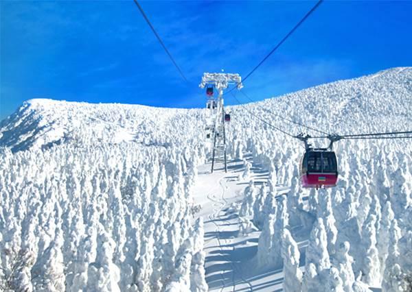 """想看雪又怕貴?""""用平民價格賞世界級雪景""""錯過今年冬季就要再等365天!"""